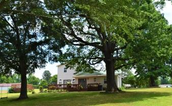 469 County Rd 603, Hanceville, AL, 35077 United States