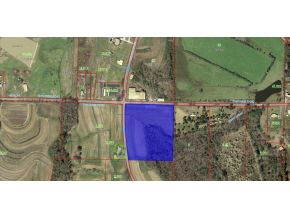 00 County Rd 1598, Baileyton, AL, 35019 United States