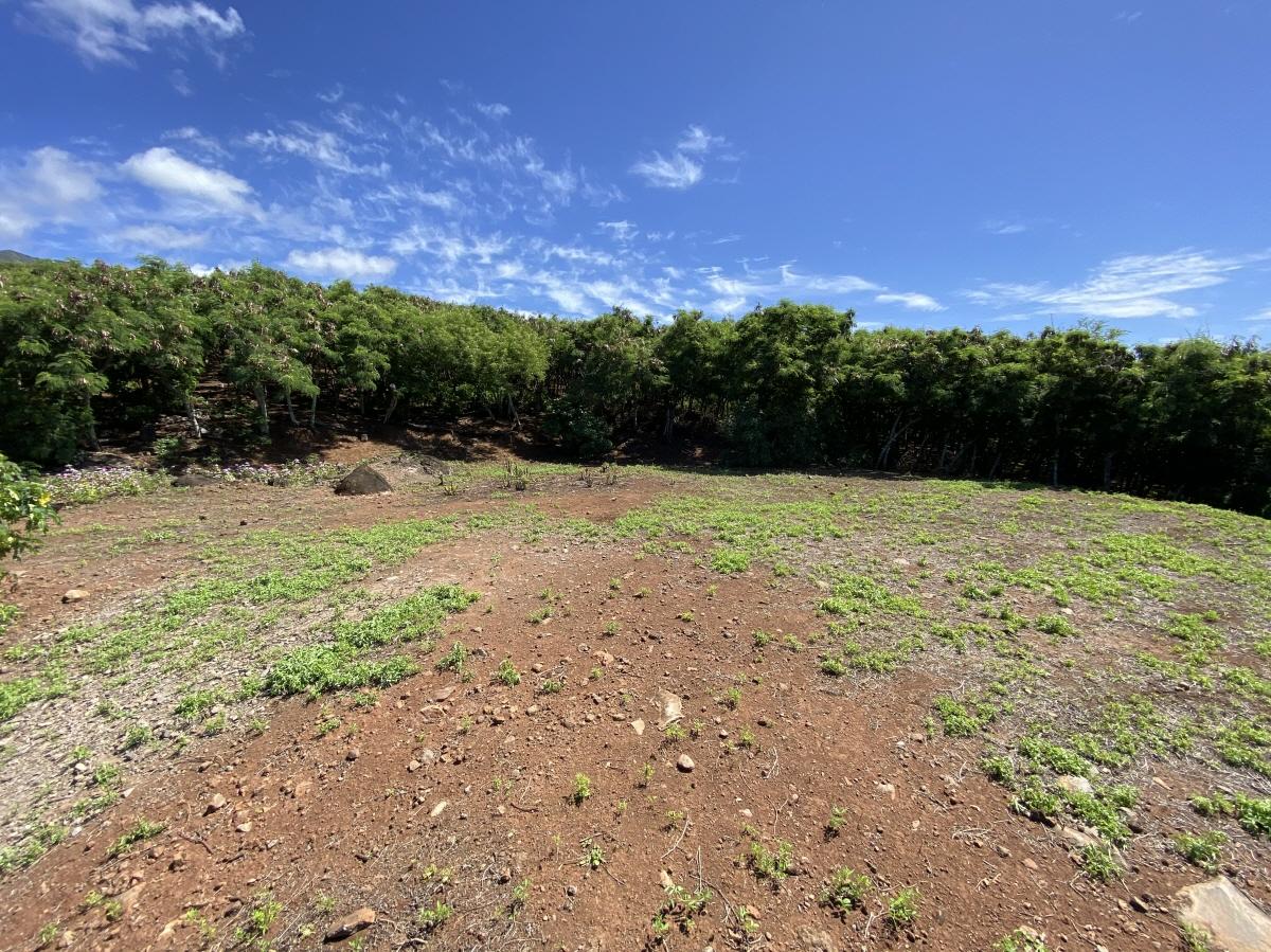 E Kamehameha V Hwy, Kaunakakai, HI, 96748 United States