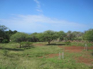 Waiokama Place Lot #45 Kawela Plantation I, Kaunakakai, HI, 96748 United States