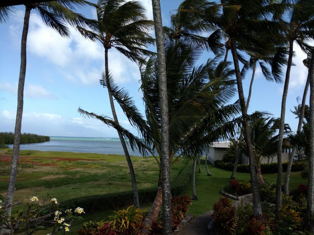 C204 7148 Kamehameha V. Hwy., Kaunakakai, HI, 96748 United States