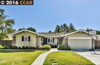 3707 Citrus Ave, Walnut Creek, CA, 94598